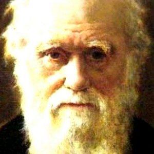 Зачем и кому был нужен Ч. Дарвин или когда мы вернемся к Богу и к самим себе?