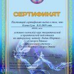 сертификат мастера синергоэтики